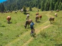 AX2007-Schliersee-Monte_Grappa-06-Passo_Brocon-028