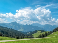 AX2009-Bodensee-Gardasee-03-Mitloedi-022