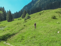 AX2009-Bodensee-Gardasee-03-Mitloedi-033