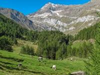 AX2010-Mittenwald-Gardasee-04-Rabland-018