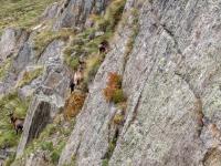 AX2010-Mittenwald-Gardasee-04-Rabland-069