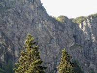 AX2011-Obersrdorf-Gardasee-02-Sankt_Anton-017