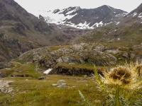AX2014-Sankt_Anton-Gardasee-05-Passo_Tornale-018