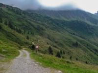 AX2014-Sankt_Anton-Gardasee-05-Passo_Tornale-050