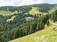 AX2016-Innsbruck-Gardasee-04-St_Nikolaus-0028