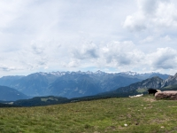 AX2016-Innsbruck-Gardasee-05-St_Apollonia-0039