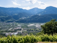 AX2016-Innsbruck-Gardasee-05-St_Apollonia-0067