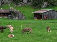AX2018-Mayrhofen-Gardasee-01-Stilfes-0025