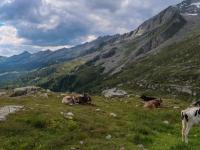 AX2018-Mayrhofen-Gardasee-01-Stilfes-0100