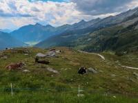 AX2018-Mayrhofen-Gardasee-01-Stilfes-0104