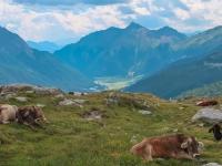 AX2018-Mayrhofen-Gardasee-01-Stilfes-0106