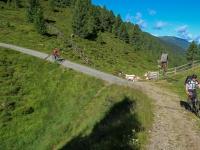 AX2018-Mayrhofen-Gardasee-03-Cortina d'Ampezzo-0013
