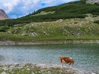 AX2018-Mayrhofen-Gardasee-03-Cortina d'Ampezzo-0094