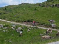 AX2018-Mayrhofen-Gardasee-05-San-Martino-0083