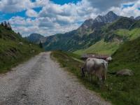 AX2018-Mayrhofen-Gardasee-05-San-Martino-0091