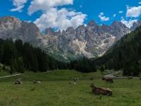 AX2018-Mayrhofen-Gardasee-05-San-Martino-0098