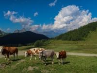 AX2018-Mayrhofen-Gardasee-06-Spera-0055