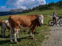 AX2018-Mayrhofen-Gardasee-06-Spera-0056