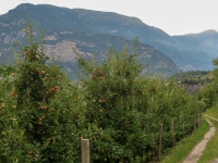 AX2018-Mayrhofen-Gardasee-08-Riva-0052