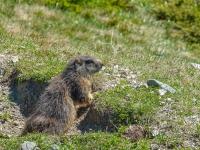 AX2021-Garmisch-Gardasee-04-Ratsching-063