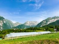AX2021-Garmisch-Gardasee-08-Riva-005